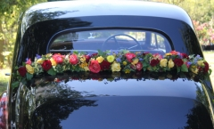 blumen-bentley-2